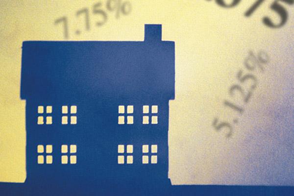 Виды ипотеки за рубежом – рискованное обилие