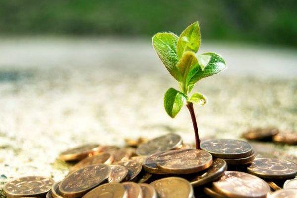 Инвестиционный кредит: особенности получения