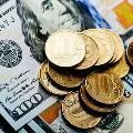 Российские экономисты заговорили о падении доллара
