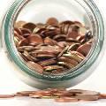 Большая часть россиян призналась в отсутствии сбережений